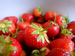 Strawberries - exercise caution when weaning babies