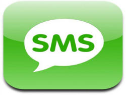 Get SMS updates on your baby food order