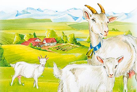 Holle goats milk is the only organic vegetarian baby milk on the UK market