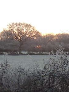 sunset-over-frozen-scene